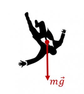 Перегрузка свободно падающего человека
